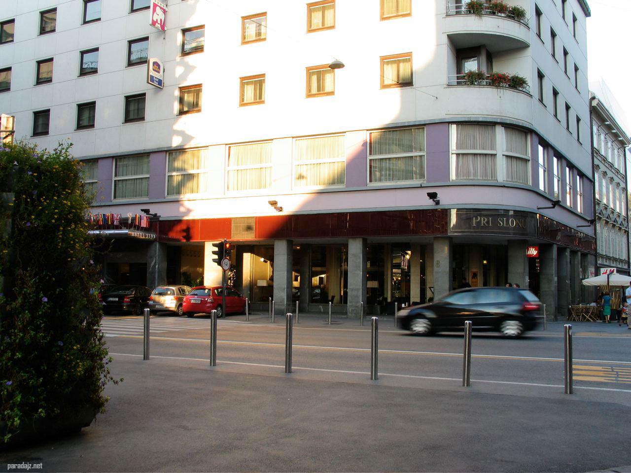 Hotel slon