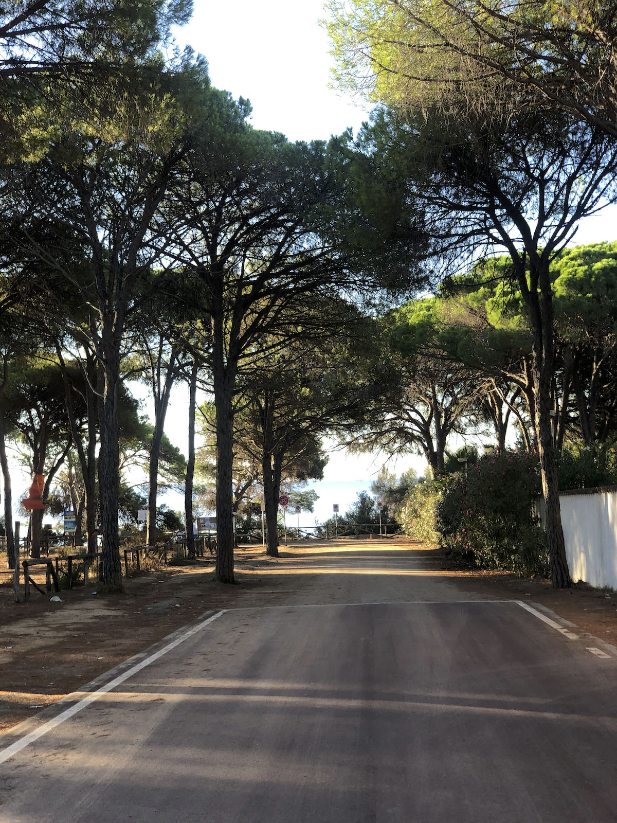 Sardinia2020_IMG_3871