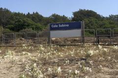 Sardinia2020_IMG_4377