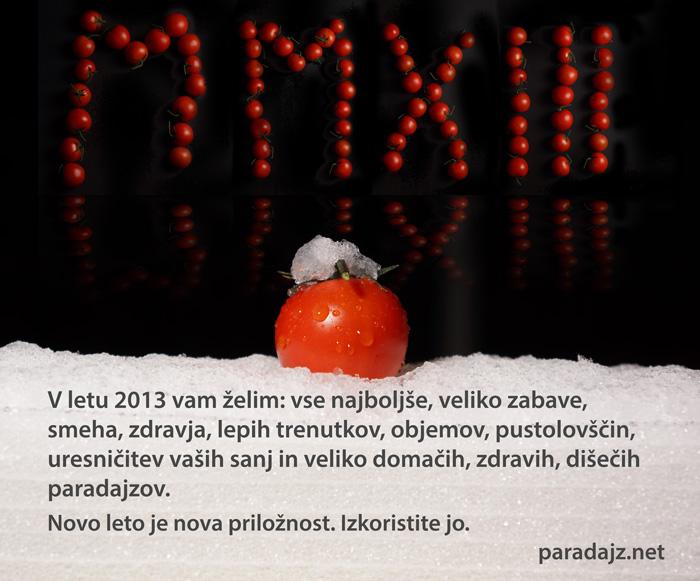 Novoletno Voščilo 2013