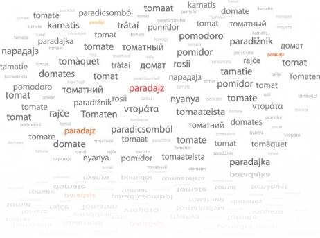 paradajz_jeziki