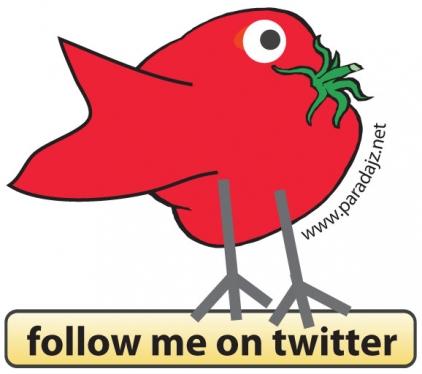 paradajz_twitter_logo_2