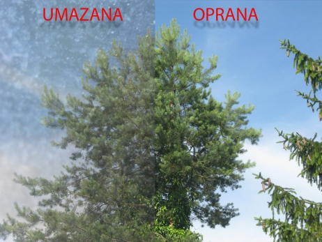 sipa_asrana