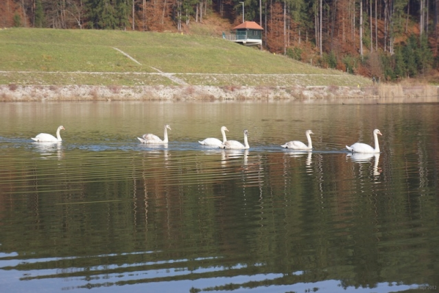 gr_jezero-05