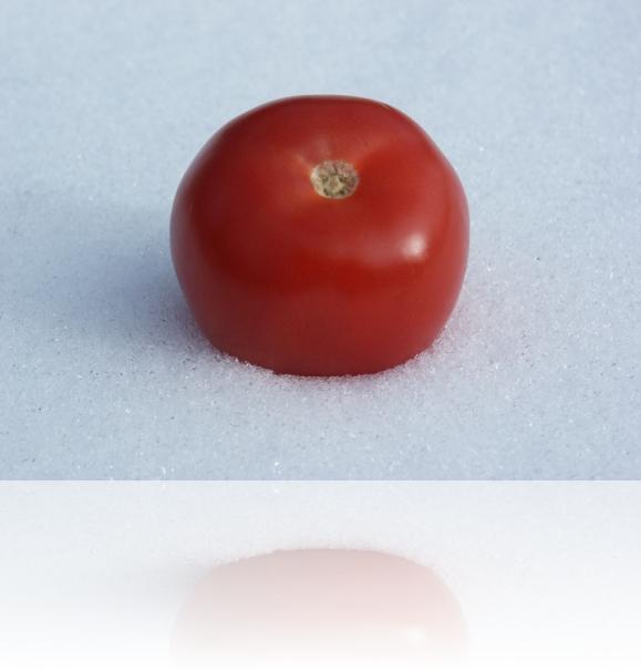 paradajz_december09